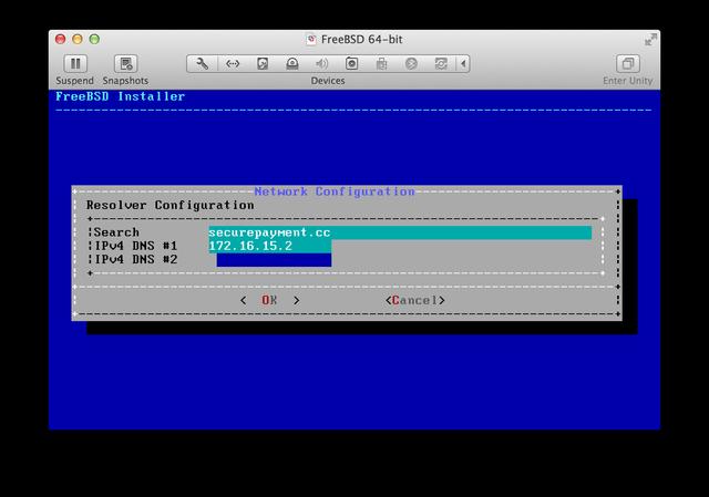FreeBSD installer DNS resolver