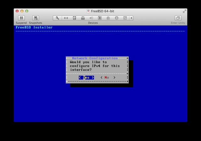 FreeBSD installer IPv4